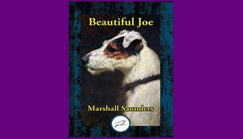 Beautiful Joe Book