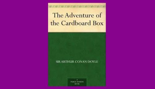 The Adventure Of The Cardboard Box Book